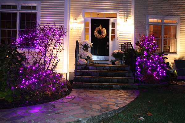 Purple Porch Project
